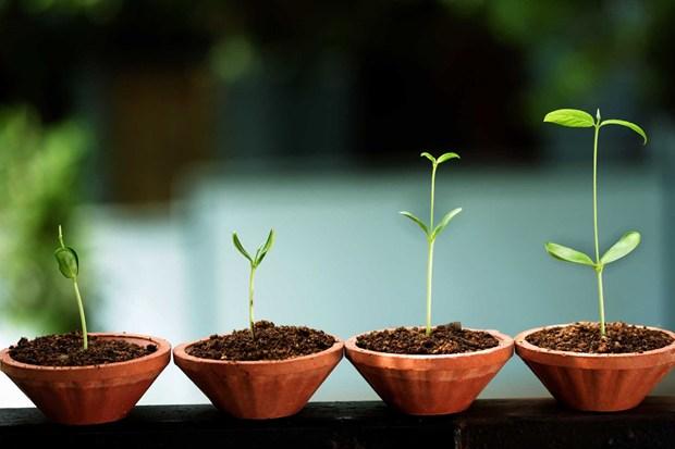 移动社交时代的草根创业价值观