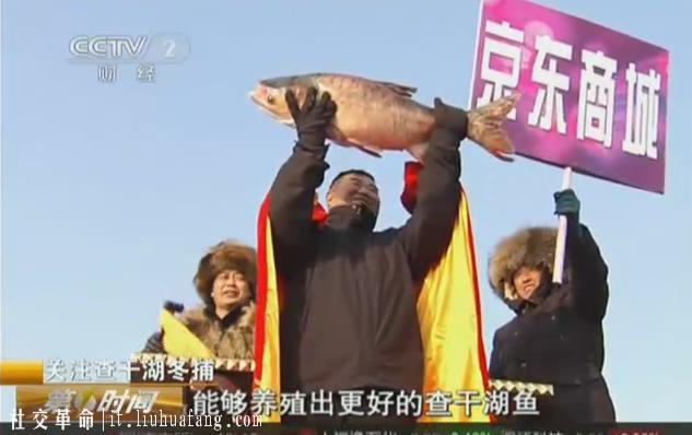 机智任性37万抢头鱼,京东生鲜的乐与惑